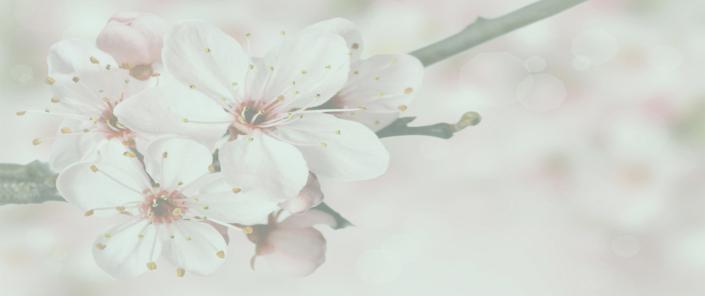 body flow temse bloemenkopie